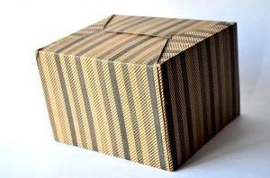 Essentials moving box