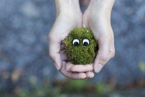 Women holding a bunch of moss