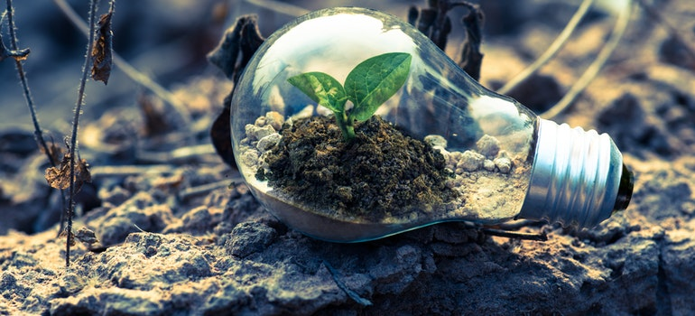 A light bulb on the ground with a plant inside is a symbol that you can have a green relocation in NYC.