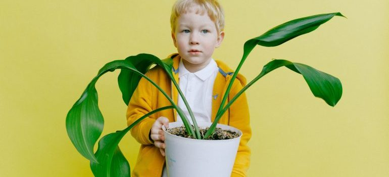 A kid holding a plant.