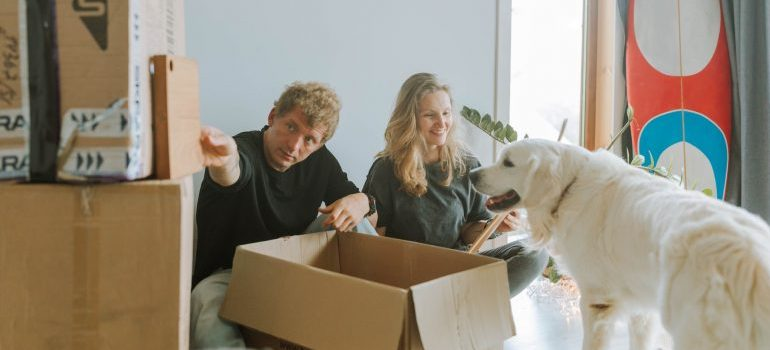 couple learning how to keep your pets safe and entertained while packing